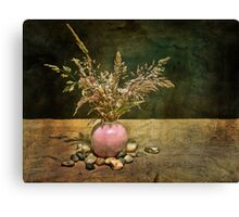 Grasses and Stones Canvas Print