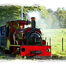Little Steam Train by hootonles