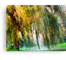 Weeping Willow Tree Daydreams Canvas Print