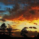 Sunset from my garden, Staffordshire UK. by Phil Mitchell