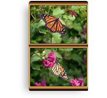 Monarch Two-fer Canvas Print