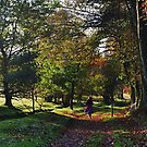 Walkin' the Dog. Downs Bank, Stone Staffrodshire. by Phil Mitchell