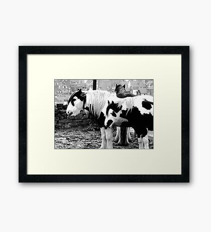 Black & White Framed Print