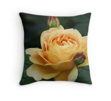 Stunning yellow and peach rose Throw Pillow