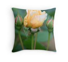 Pretty peach and yellow rose Throw Pillow