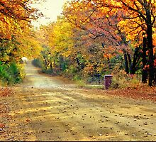 Color Book Road  by JohnDSmith