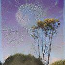 The Happy Tree by Rozalia Toth