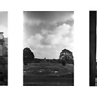 Witley Court Triptych II by Matthew Walters