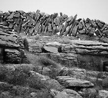 Burren Wall, County Clare by Julian Easten