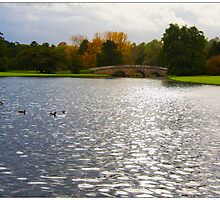 Audley End Lake by Hertsman
