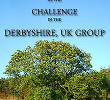 WINNER OF THE CHALLENGE IN THE DERBYSHIRE, UK GROUP by Geoff Fisher