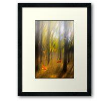Shed leaves Framed Print