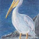 Pelican 1 ACEO by Sherri Ivey