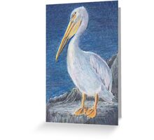 Pelican 1 ACEO Greeting Card