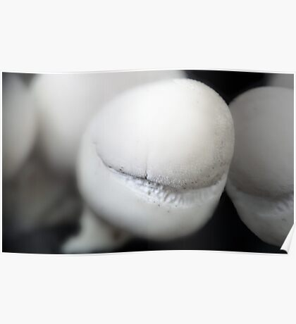 A Puffball*s smile Poster