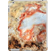 Quartz in Color iPad Case/Skin