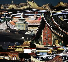 Asian Architecture by Yvonne Pfeifer
