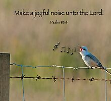 Make a joyful noise unto the Lord! by Bonnie T.  Barry