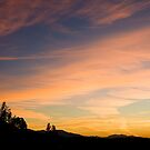 Runyon Canyon Sunrise - Hollywood, CA by Ray Schiel