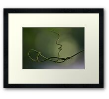 Searching for something to hold on to... 0378 Framed Print