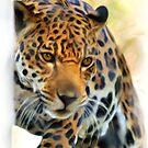 Jaguar by whiterussian