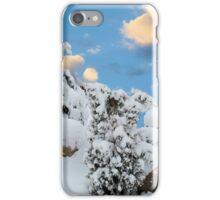 Ground Hog Day, 2013 iPhone Case/Skin