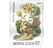Flowers Soviet Union stamp series 1988 CPA 5969 USSR Poster
