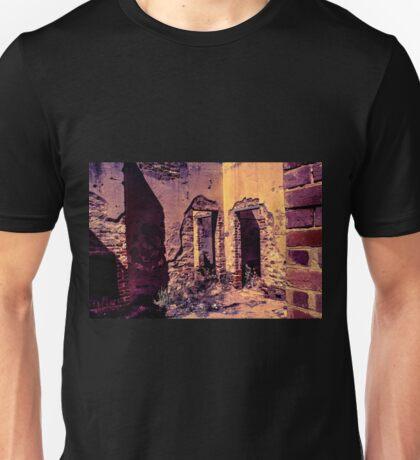 Stone Walls Unisex T-Shirt