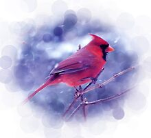 Red Cardinal in the Snow by Lena127