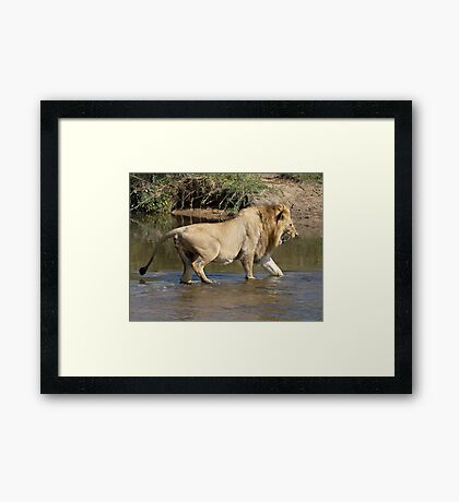 Majingilane Male Crossing River Framed Print