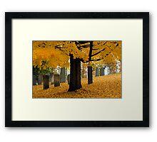 """Fallen"" Framed Print"