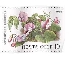 Flowers Soviet Union stamp series 1988 CPA 5966 USSR Poster