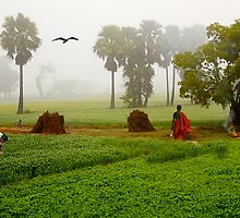 The Village Life by Mukesh Srivastava