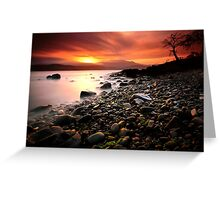 Sun kissed rocks Greeting Card