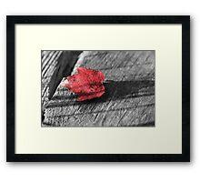 Red Leaf Framed Print
