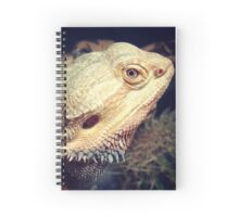 Eyes That Kill Spiral Notebook