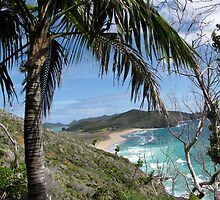 Lord Howe Island's Icons by DianneLac