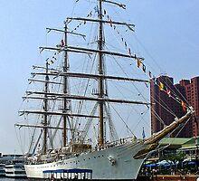 Tall Ship by Darlene Bayne