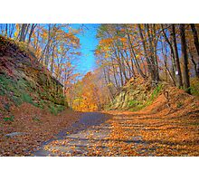 A Fall Drive Photographic Print