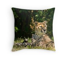 Lunch???  Did Someone Say Lunch??? Throw Pillow