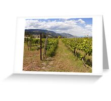 Kelowna vines Greeting Card
