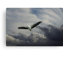 Ruler of the Skies Canvas Print