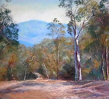 'High Country Track' by Lynda Robinson