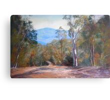 'High Country Track' Metal Print