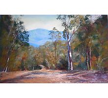 'High Country Track' Photographic Print