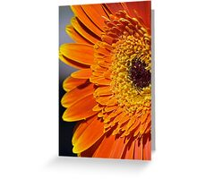 Face On Greeting Card
