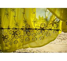Wired for Yellow, Dhatura, Nepal Photographic Print