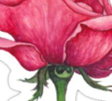 Rose nr. 1 Sticker