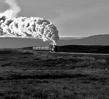 Steam I by Andy Taylor
