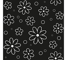 Pattern in flowers of camomile Photographic Print